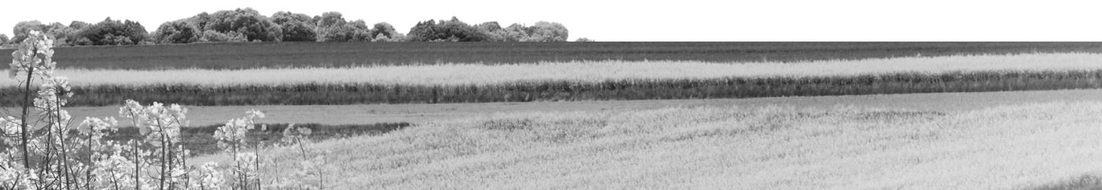 Oferta Kujawsko-Pomorskiego Doradztwa Rolniczego