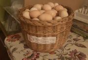 Jaja z własnego chowu