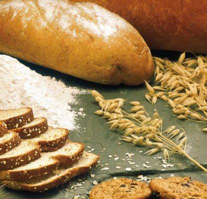 Pieczywo iprodukty zbożowe
