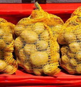 Ziemniaki Jelly, Gala