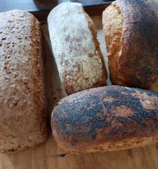 Chleb dobrzyński
