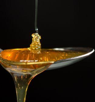 Miód pszczeli faceliowy