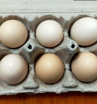 Jaja od zielononóżek