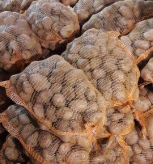 Ziemniak Lord